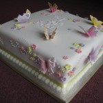 BUTTERFLY-CAKE-AUG10-5