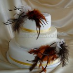 Feather Cake 3Tier