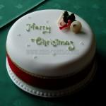 Plain simple Merry Christmas